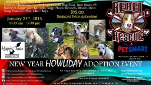 4th New Year Howliday Adoption Event Jan 23rd