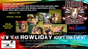 New Year Howliday Adoption Event