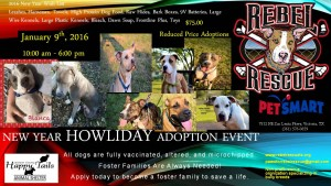 New Year Howliday Adoption Event Jan 9th