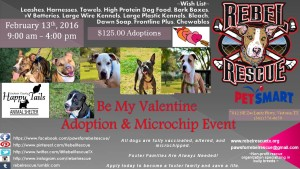 Valentines Day Adoption Event