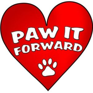 paw-it-forward